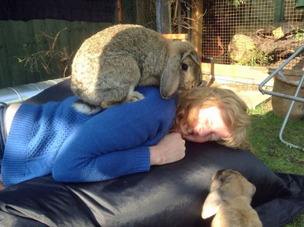 attacked by bunnies