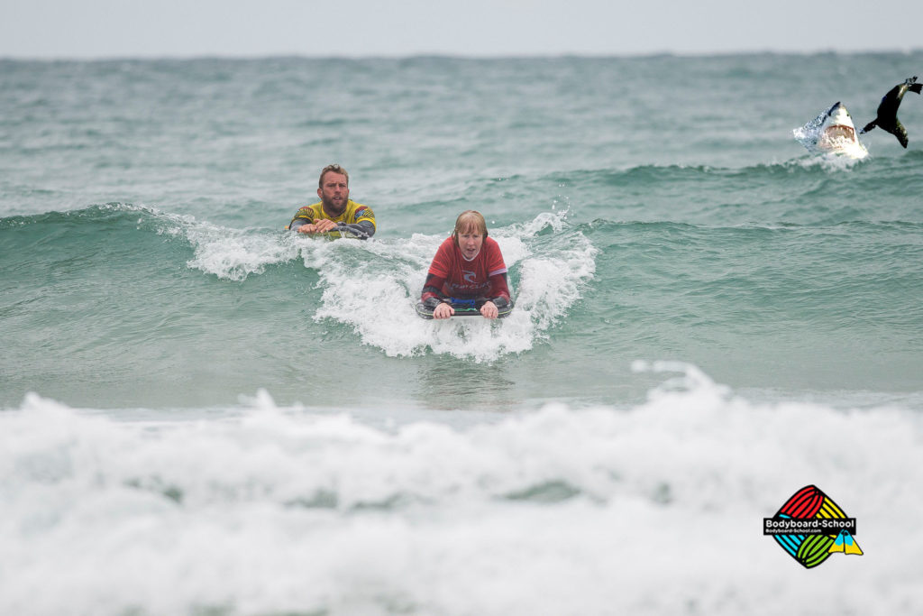 bodyboarding-and-sealife-2