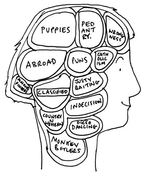 FIona brain.
