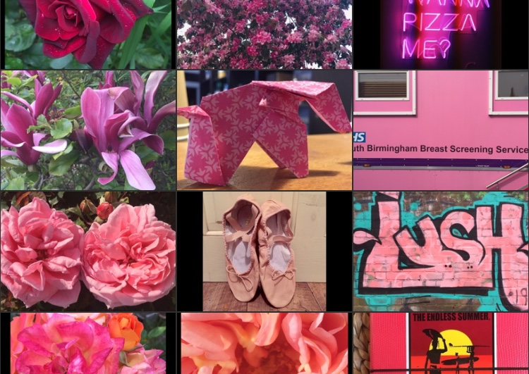 my-year-in-colour-pink-snapshot